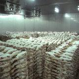 Medium Temperature Cold Storage Room for Meat & Aquatic Products