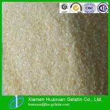 Made in China Food Grade Gelatin Bovine Gelatin