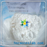 Cutting Phases Steroids Trenbolone Enanthate Powder as Androgen Receptor