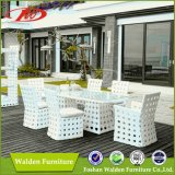 Wicker Furniture, Garden Table, Leisure Chair (DH-9538)