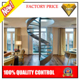 Stainless Steel Curved Staircase with Glass Tread