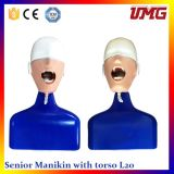 Best Selling Products Dental Simulation Training Made in China