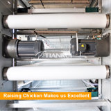 Tianrui Automatic Chicken Manure Removing System for Poultry Farm