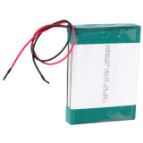 Li-Polymer 14.8V 3300mAh Rechageable Battery Pack (4S1P of FLP-486789 with PCM)