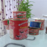 Hot Sell Tomato Paste in Packing 210g Tins