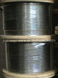 Grade#304 Stainless Steel Wire Rope-6x19+PP-3.5mm