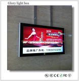 32 Inch Wall Mounting Advertising Player