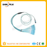 Fiber Optic Fan-out 12 Cores Pigtail MPO to Sc PC