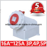 IP67 3p+E 63A 400V Wall-Mounted Power Outlet
