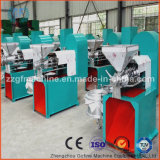 Large Rapeseed Oil Extraction Equipment