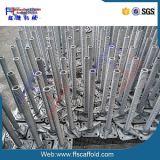 Galvanized Steel Hollw Scaffolding Screw Jack Base for Scaffold (FF)