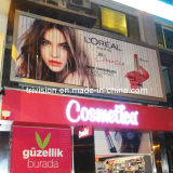 Shop Wall Mounted Aluminium Advertising Trimedia (F3V-131S)