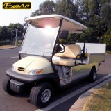 Two Seats Electric Golf Cart with Case