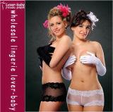 White Black Lace Sexy Women′s Panty (L9126)