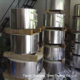 Expert Manufacturer Stainless Steel Strips (AISI321)