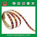 SMD 3528 Waterproof LED Strip Light IP65 60LEDs/Meter (HH-SR60F110Y12-3528)