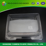 Disposable Food Storage Packaging Container
