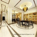 600X600mm Building Material Soluble Salt Polished Porcelain Floor Tile (6102)