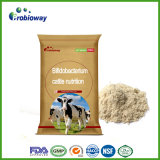 Reliable Dairy Cattle Probiotics Acidifying Agent Livestock Feed Additives
