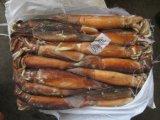 200-300g Frozen Seafood Todarodes Pacificus Squid