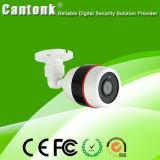 2.8mm Plastic & Weatherproof Low-Stream Hdr IP Camera (CA25)
