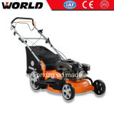 Gasoline Type Self-Propelled Lawn Mower (WD22)