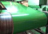 Carbon Steel Pre-Painted Steel Plate in Coil