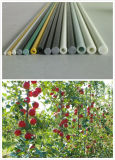 Flexible Fiberglass Plastic Plant Stakes/Pole/Staking/Rods