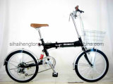 Folding Bicycle with Black Color/Bike for Popular (FD-012)