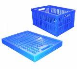 Plastic Foldable Container, Storage Container (PKL-1)