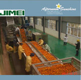 Full Automatic Natural Fruit Juice Production Line
