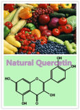 Natural Quercetin Extract on Sell