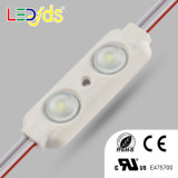 DC12V 2PCS Waterproof 2835 SMD LED Module for Advertising