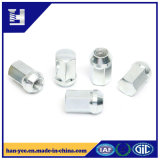 High Precision Steel Hex Nut with White Zinc Plated