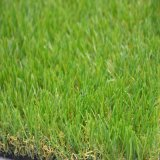 Artificial Grass Carpet, Natural Looking Fake Grass