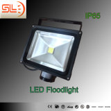 10W IP65 LED Floodlight with Sensor