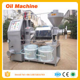 Original Oil Expeller and Mini Oil Mill Screw Type Sunflower Oil Mill Project for Sale