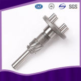 Stainless Steel Worm Gear Shaft with ISO 9001 Approved