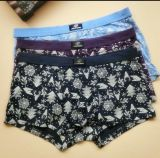 Underwear /Underpant