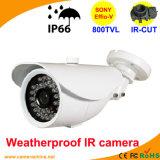 Sony 800tvl Color IR CCD Camera