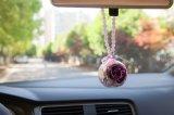 Promotion Preserved Flower for Car Decoration