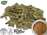 Manufacturer Price 100% Natural Fennel Seed Extract