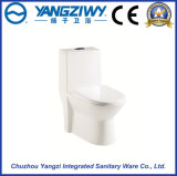 Siphonic Excess Eddy household One Piece Toilet
