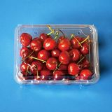 disposable clamshells blister fruit packaging tray container for grape tomatoes