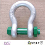 Stainless Steel304/316 European Bow Type Shackle for Hardware Lifting