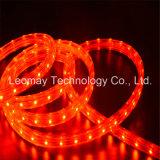 High Brightness 110/220V Christmas Light SMD LED Strip Light