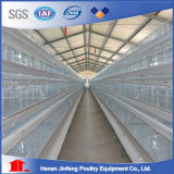 H Type Chicken Cage System Jinfeng Product