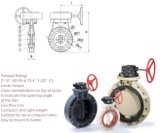 High Quality Butterfly Valve (Gear Type)