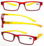 Assorted Color Reading Eyewear Fashionable Plastic Reading Eyewear (RP474001-2)