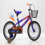 Beatiful Children Bicycle for 10 Years Old Child